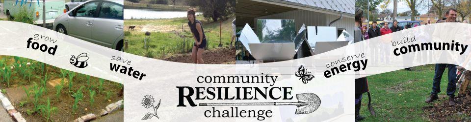 Community Resillience Challenge