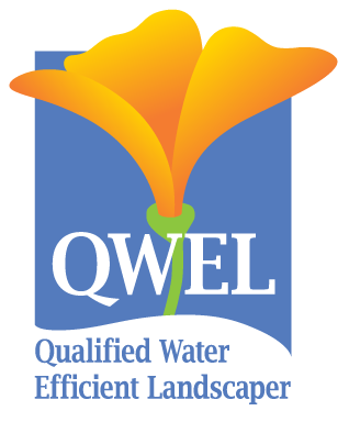 qwel-logo-transparent